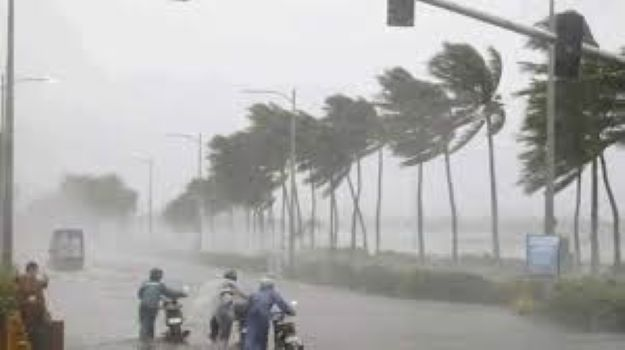 Cyclone Nivar makes landfall near Puducherry, weakens into 'severe cyclonic storm'